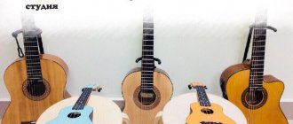 Укулеле и гитара в чем разница